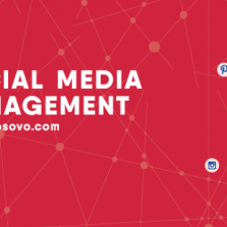 Social Media Management Training