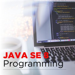 Java Se 8 Programming Training
